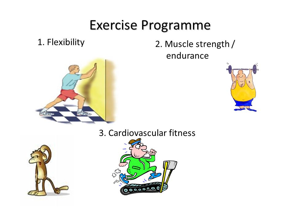 Exercise Programme 3. Cardiovascular fitness 2. Muscle strength / endurance 1. Flexibility
