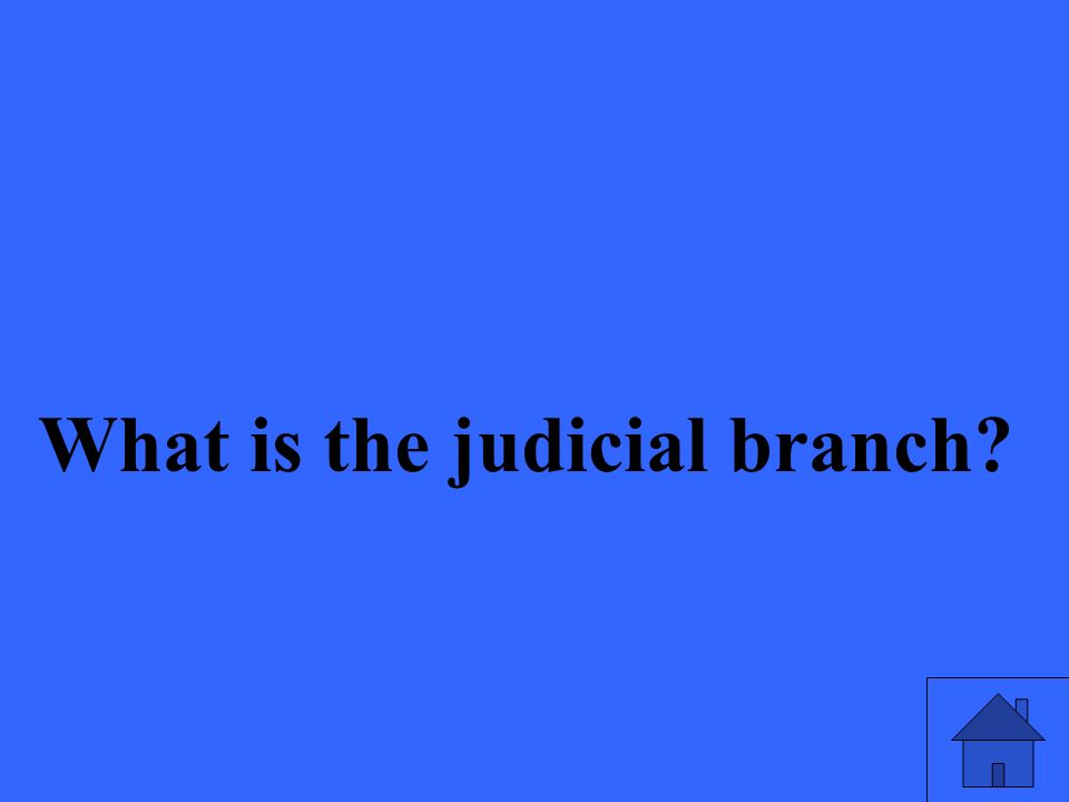 What is the judicial branch