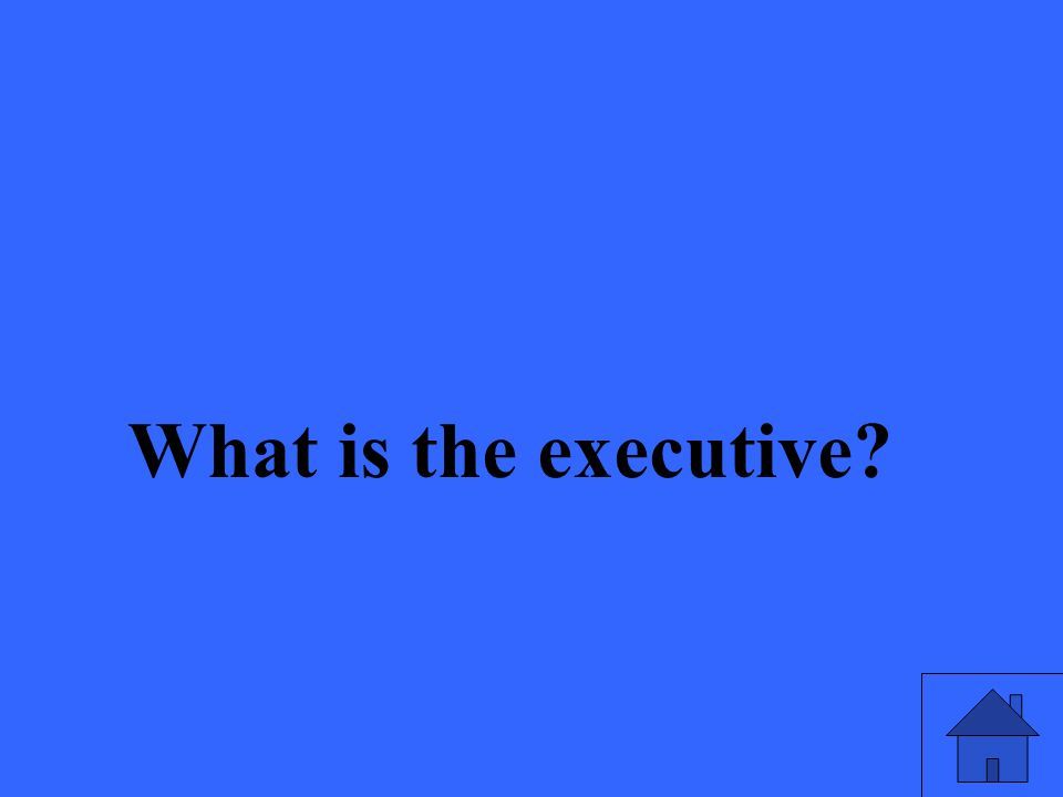 What is the executive