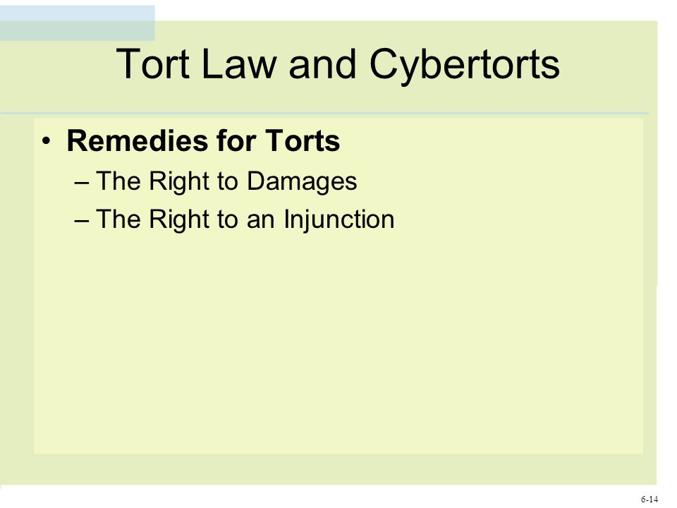 6-14 Tort Law and Cybertorts Remedies for Torts –The Right to Damages –The Right to an Injunction