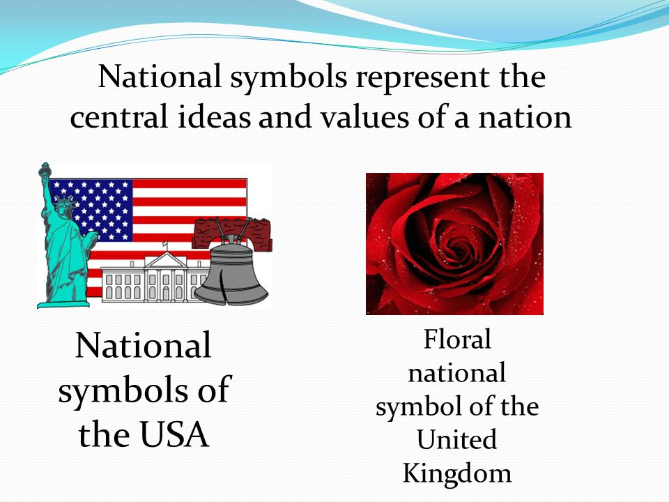 National Symbols Of Australia Goals To Generalize About The
