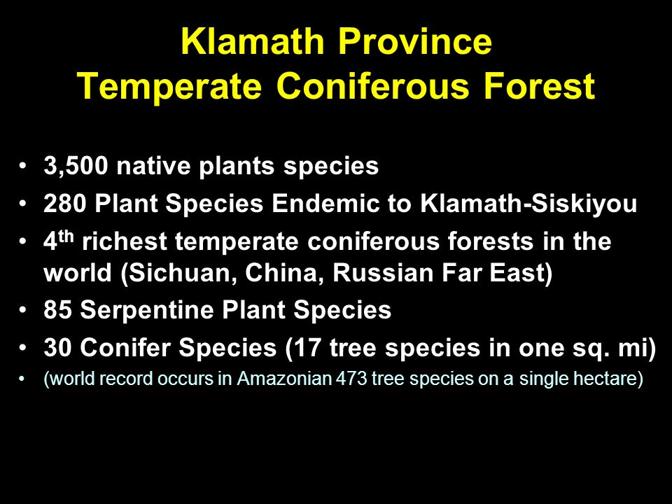Klamath Province Temperate Coniferous Forest 3,500 native plants species 280 Plant Species Endemic to Klamath-Siskiyou 4 th richest temperate coniferous forests in the world (Sichuan, China, Russian Far East) 85 Serpentine Plant Species 30 Conifer Species (17 tree species in one sq.