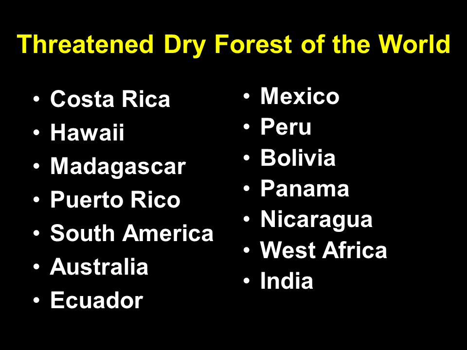 Threatened Dry Forest of the World Costa Rica Hawaii Madagascar Puerto Rico South America Australia Ecuador Mexico Peru Bolivia Panama Nicaragua West Africa India
