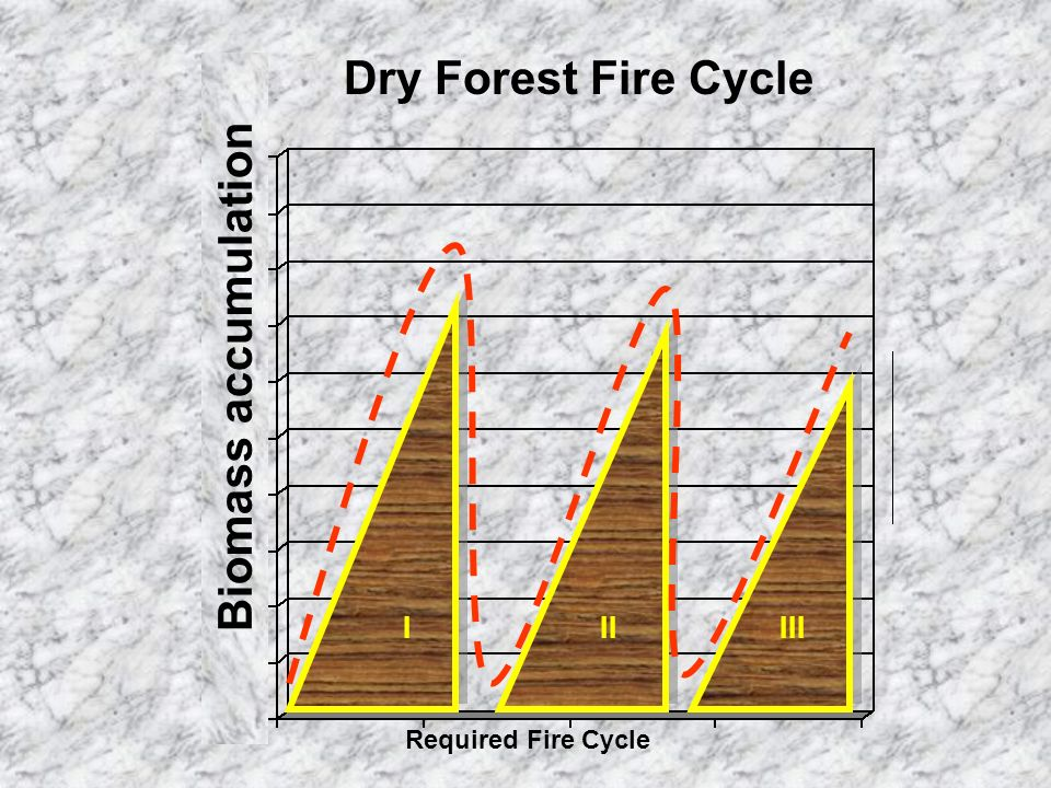 Required Fire Cycle Dry Forest Fire Cycle Biomass accumulation IIIIII