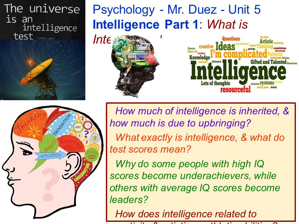 Psychology mr duez unit 5 intelligence part 1 what is 1 psychology thecheapjerseys Choice Image