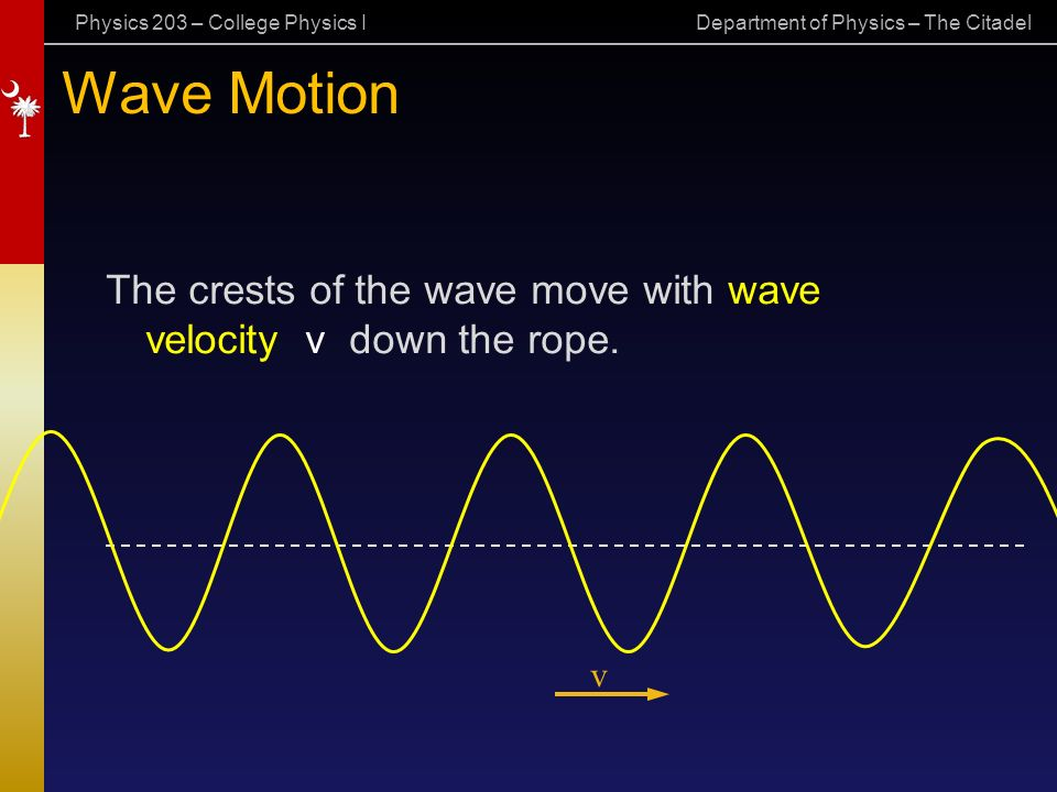 Physics 203 – College Physics I Department of Physics – The Citadel Wave Motion The crests of the wave move with wave velocity v down the rope.