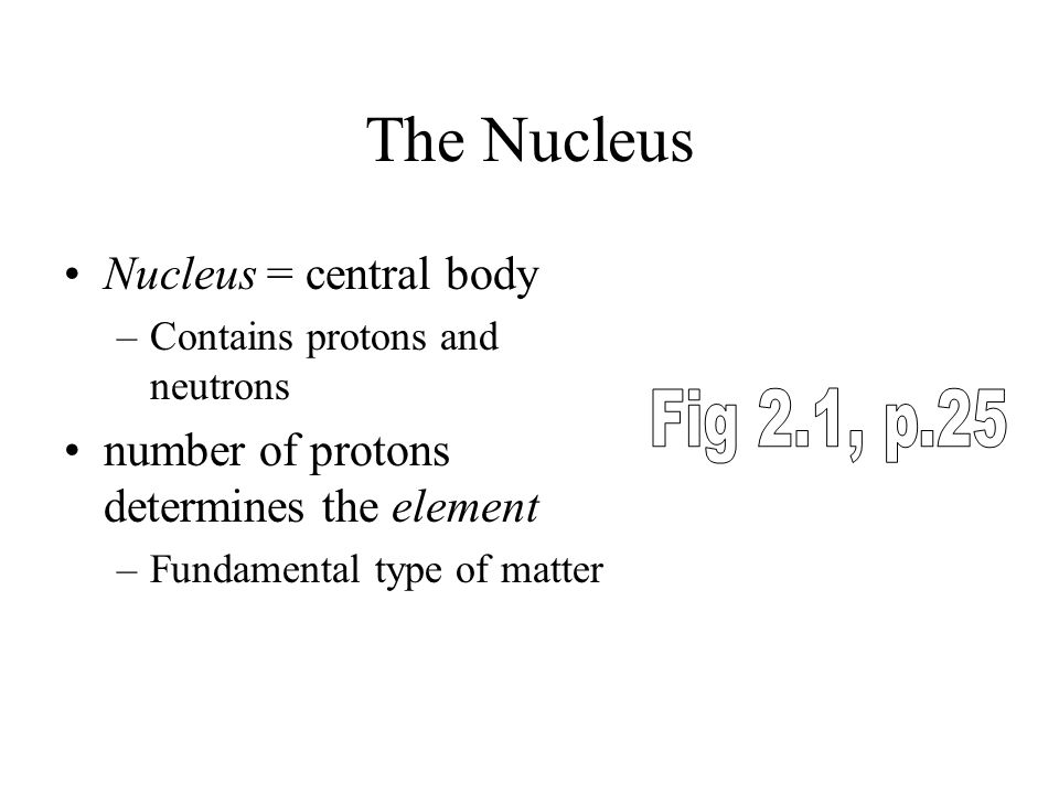 The Nucleus Nucleus = central body –Contains protons and neutrons number of protons determines the element –Fundamental type of matter