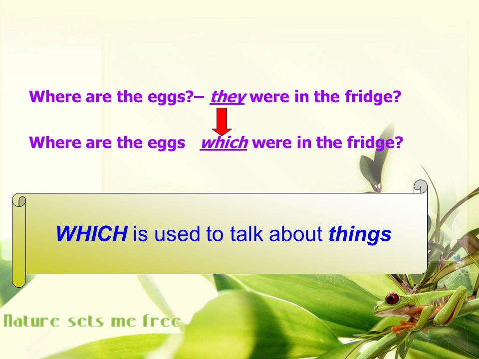 Where are the eggs – they were in the fridge. Where are the eggs which were in the fridge.
