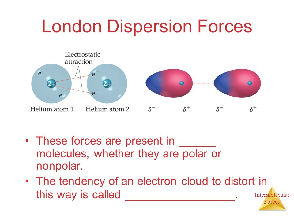 Intermolecular Forces London Dispersion Forces These forces are present in _____ molecules, whether they are polar or nonpolar.