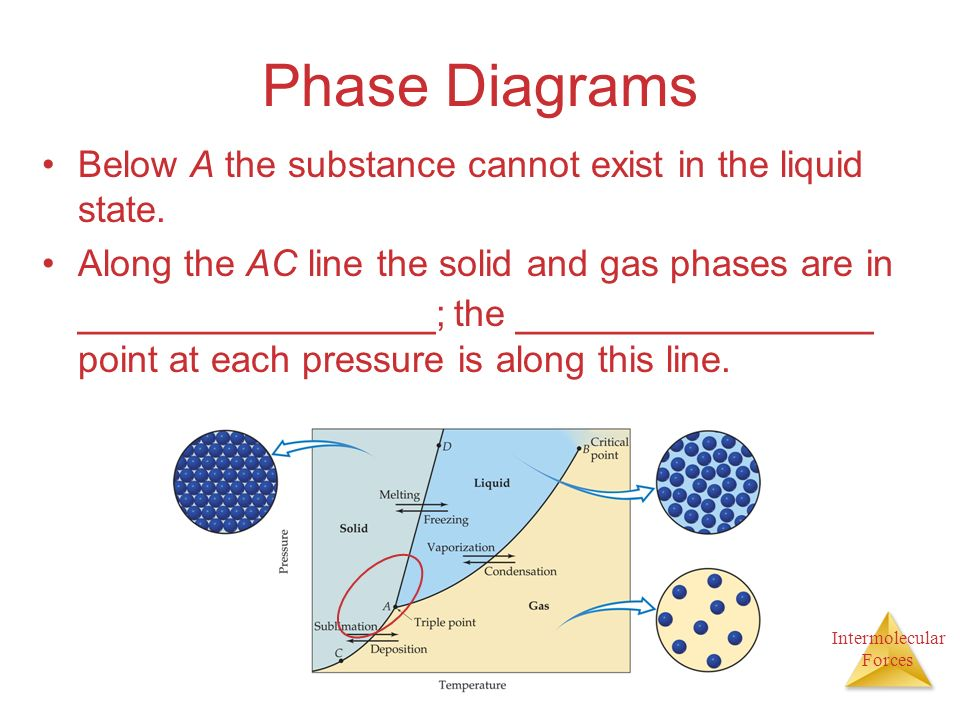 Intermolecular Forces Phase Diagrams Below A the substance cannot exist in the liquid state.
