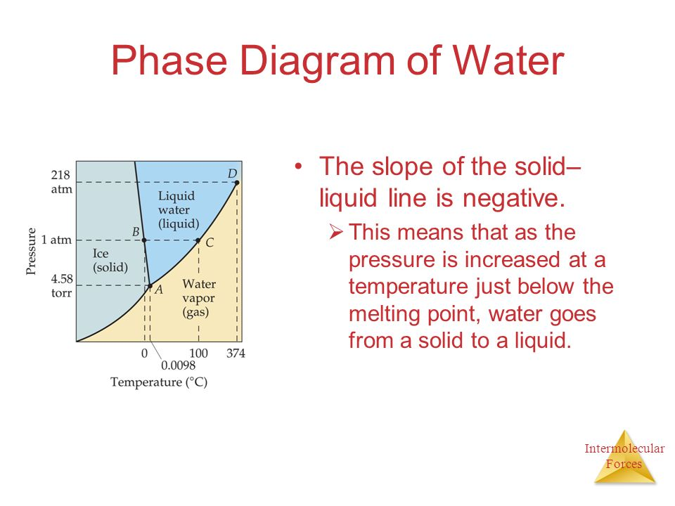 Intermolecular Forces Phase Diagram of Water The slope of the solid– liquid line is negative.