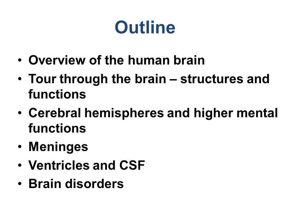 computer human brain essay similar articles