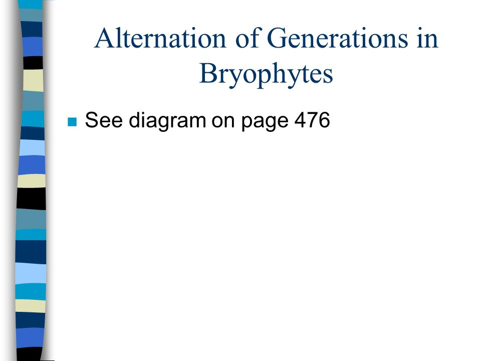 Alternation of Generations in Bryophytes n See diagram on page 476