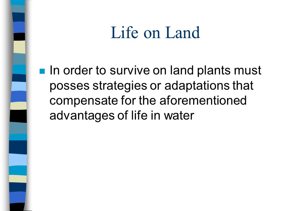 Life on Land n In order to survive on land plants must posses strategies or adaptations that compensate for the aforementioned advantages of life in water