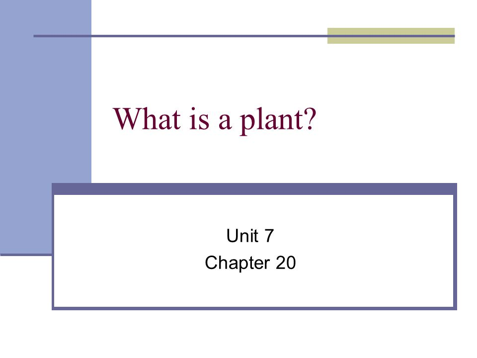 What is a plant Unit 7 Chapter 20