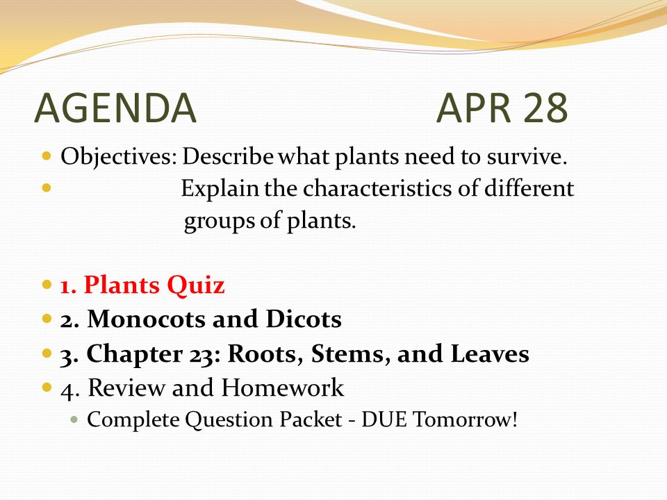 AGENDA APR 28 Objectives: Describe what plants need to survive.