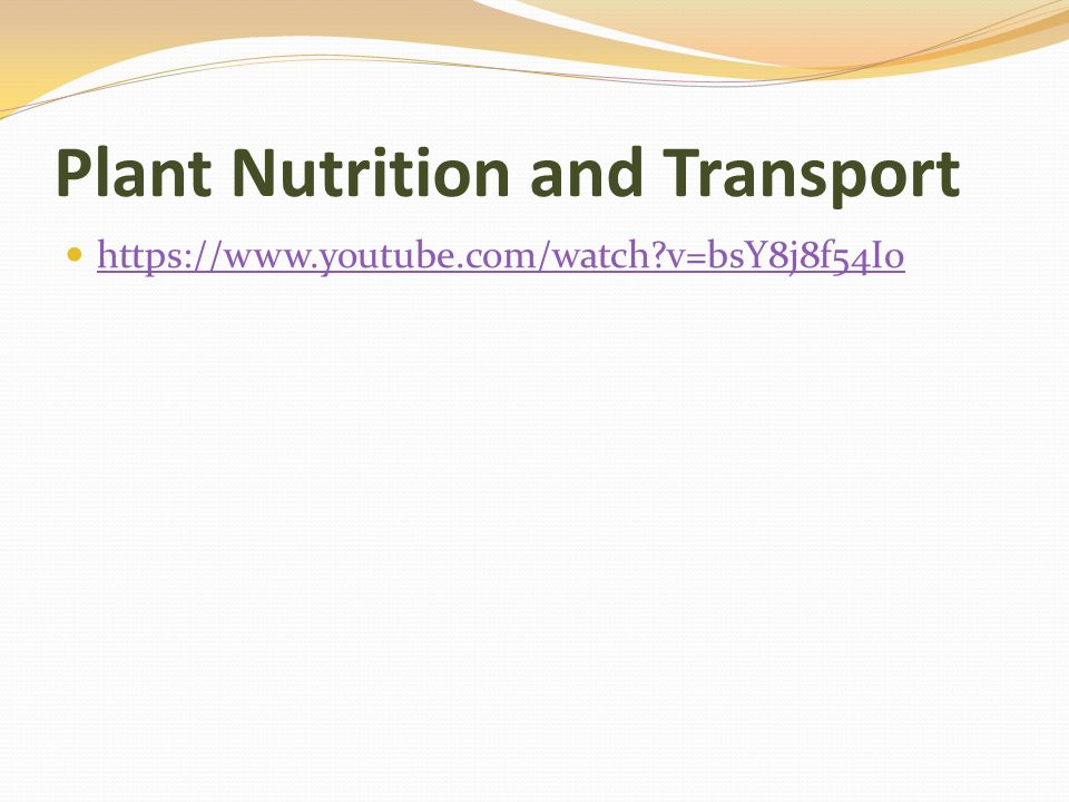 Plant Nutrition and Transport   v=bsY8j8f54I0