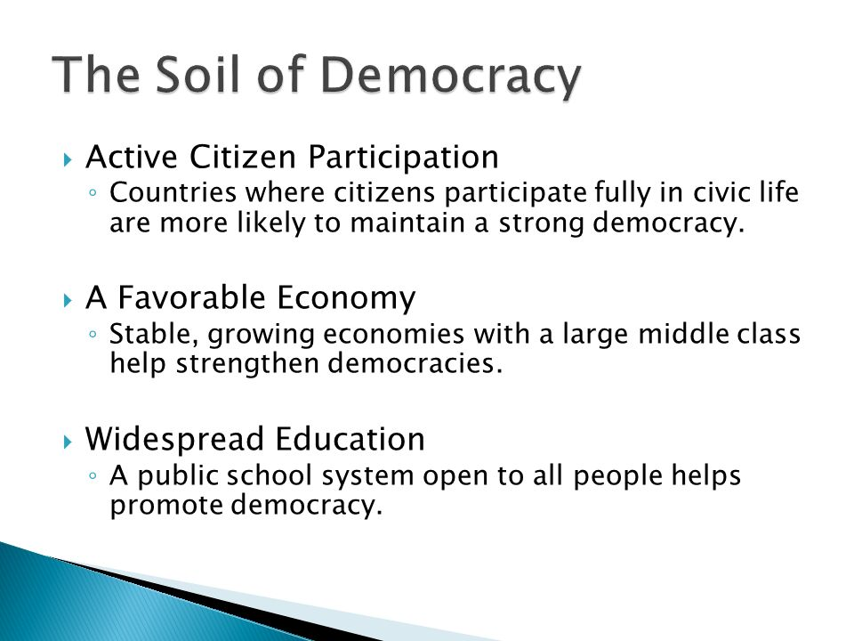  Active Citizen Participation ◦ Countries where citizens participate fully in civic life are more likely to maintain a strong democracy.