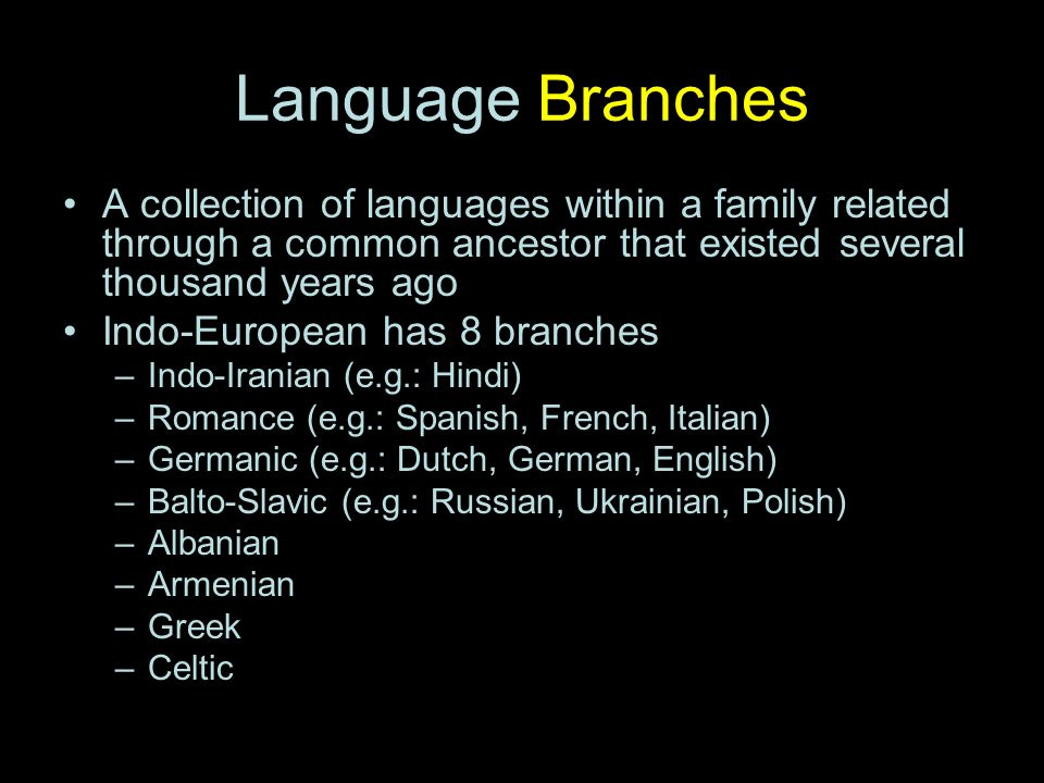 branches in hindi