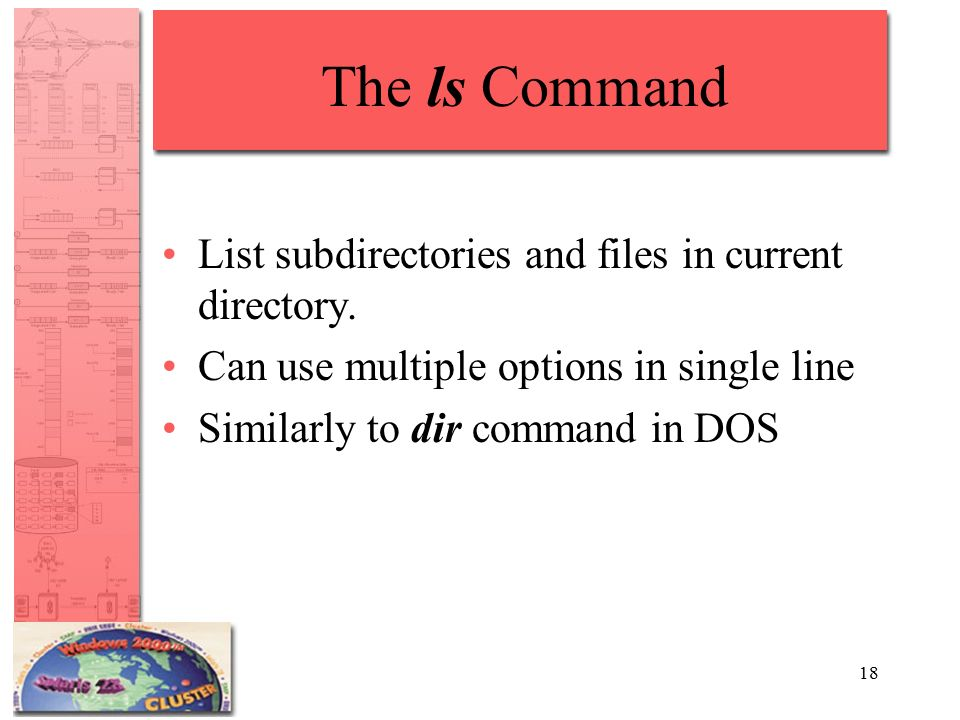 18 The ls Command List subdirectories and files in current directory.