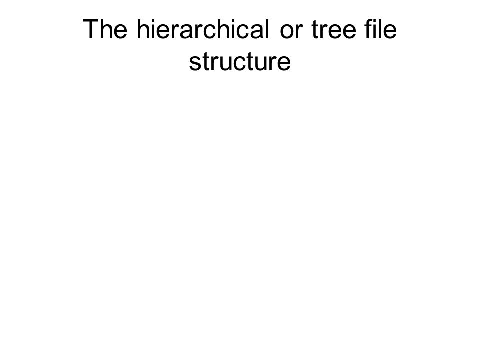 The hierarchical or tree file structure