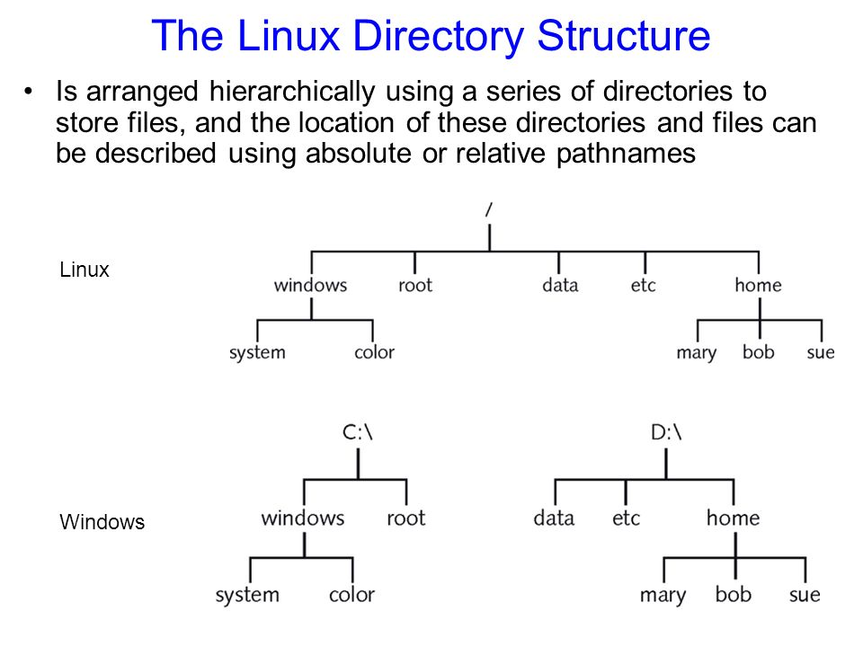 The Linux Directory Structure Is arranged hierarchically using a series of directories to store files, and the location of these directories and files can be described using absolute or relative pathnames Figure 4-2: The Linux filesystem structure Linux Windows