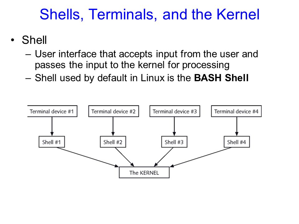 Shells, Terminals, and the Kernel Shell –User interface that accepts input from the user and passes the input to the kernel for processing –Shell used by default in Linux is the BASH Shell