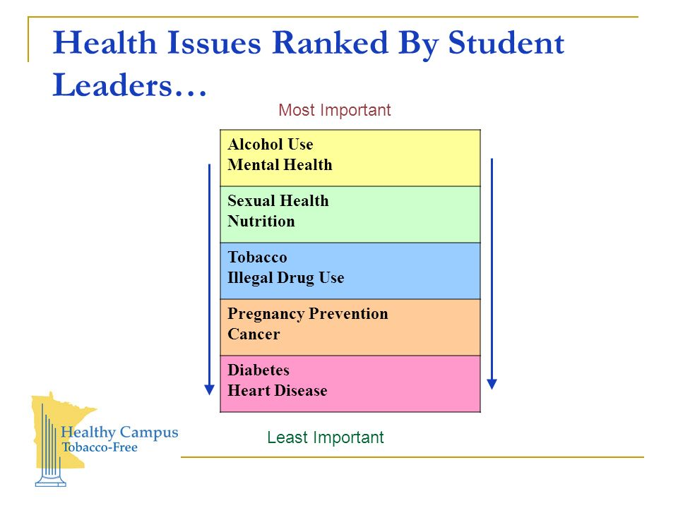 Health Issues Ranked By Student Leaders… Alcohol Use Mental Health Sexual Health Nutrition Tobacco Illegal Drug Use Pregnancy Prevention Cancer Diabetes Heart Disease Least Important Most Important