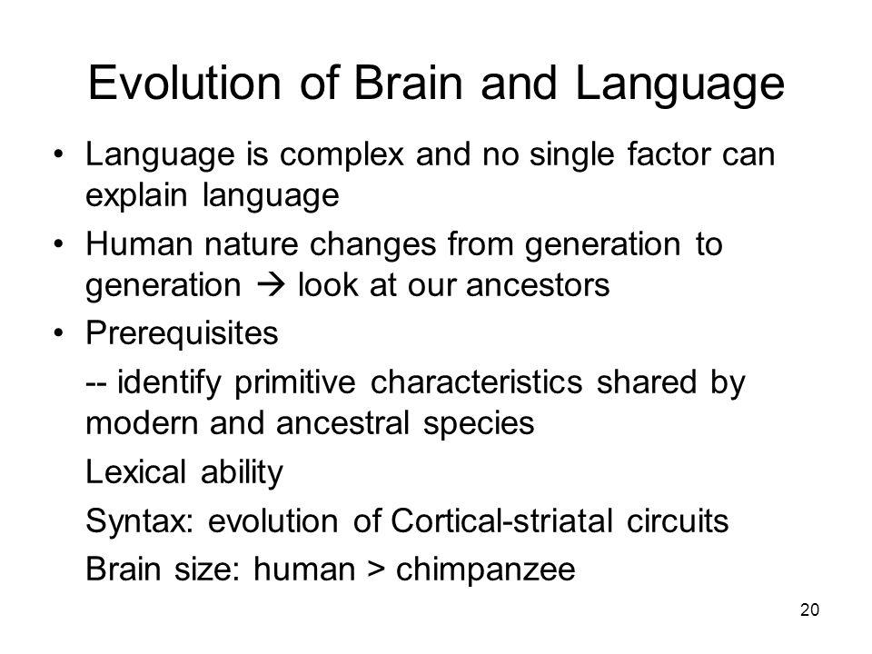 theories of language evolution