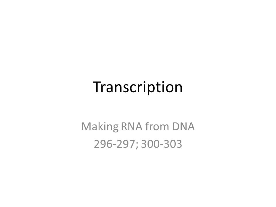 Section 12 3 Rna And Protein Synthesis Worksheet Answers : Protein Synthesis An Intro To This Section Transcription Making  With Protein Synthesis An Intro To This Section  Transcription Making Rna From  Dna   From Slideplayer.com Photos