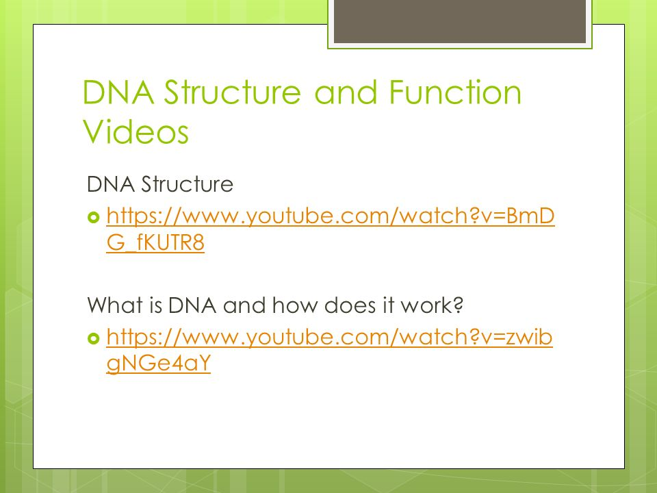 DNA Structure and Function Videos DNA Structure    v=BmD G_fKUTR8   v=BmD G_fKUTR8 What is DNA and how does it work.