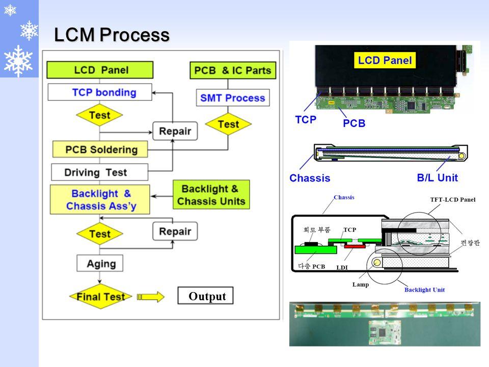 LCM Process Output