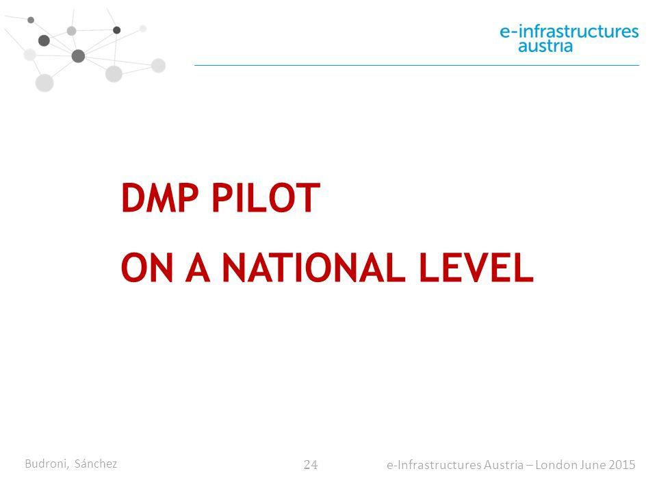 Budroni, Sánchez 24 e-Infrastructures Austria – London June 2015 DMP PILOT ON A NATIONAL LEVEL