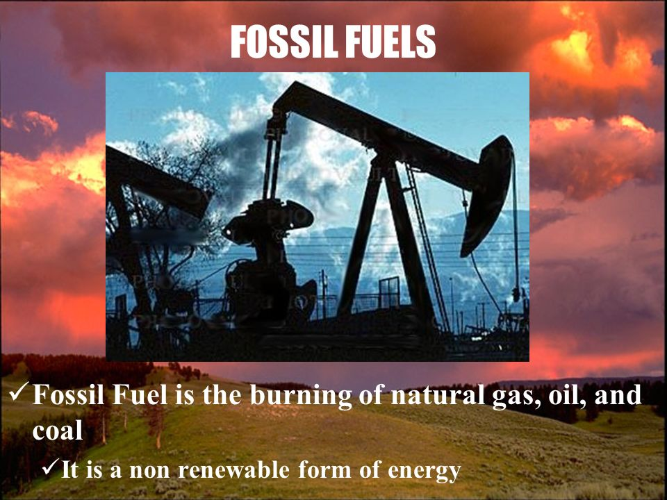 the fossil fuel coal essay