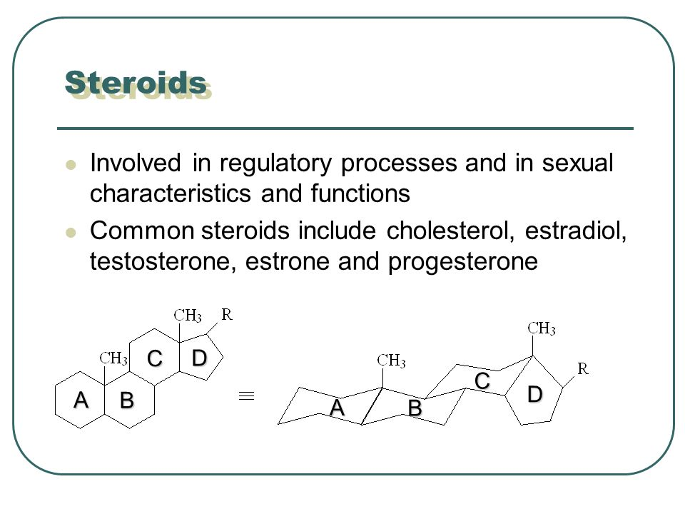 Steroids Involved in regulatory processes and in sexual characteristics and functions Common steroids include cholesterol, estradiol, testosterone, estrone and progesterone A B C D A B C D