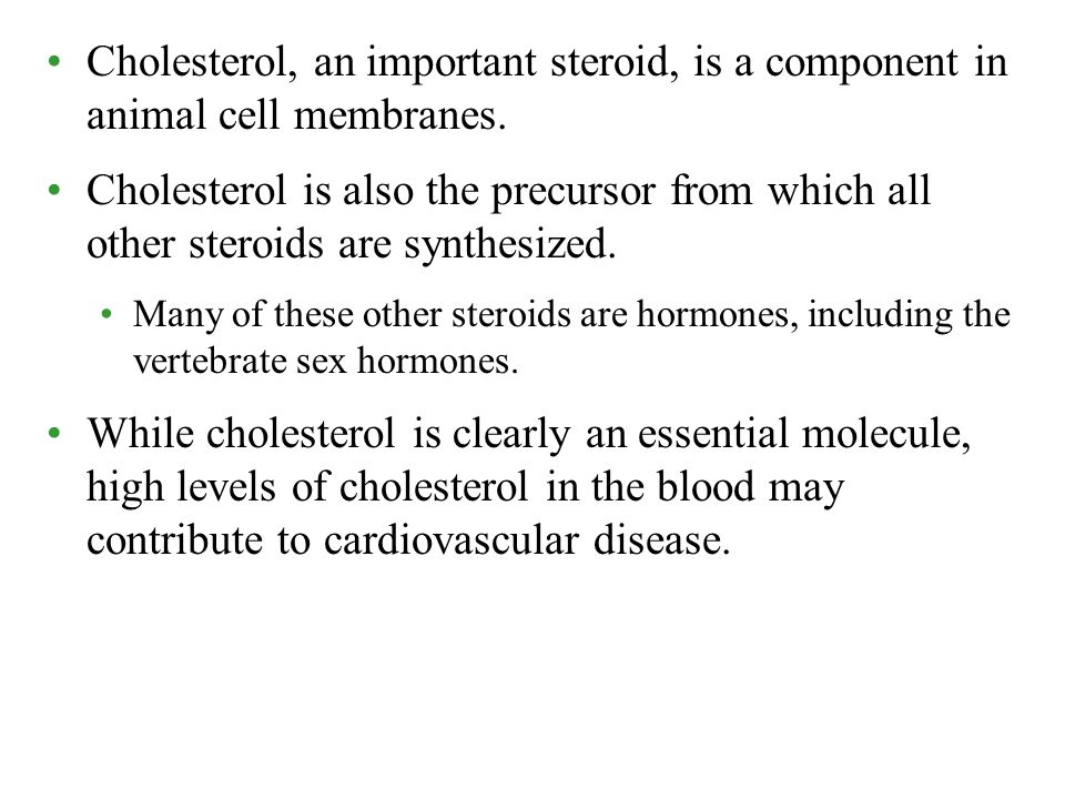 Cholesterol, an important steroid, is a component in animal cell membranes.