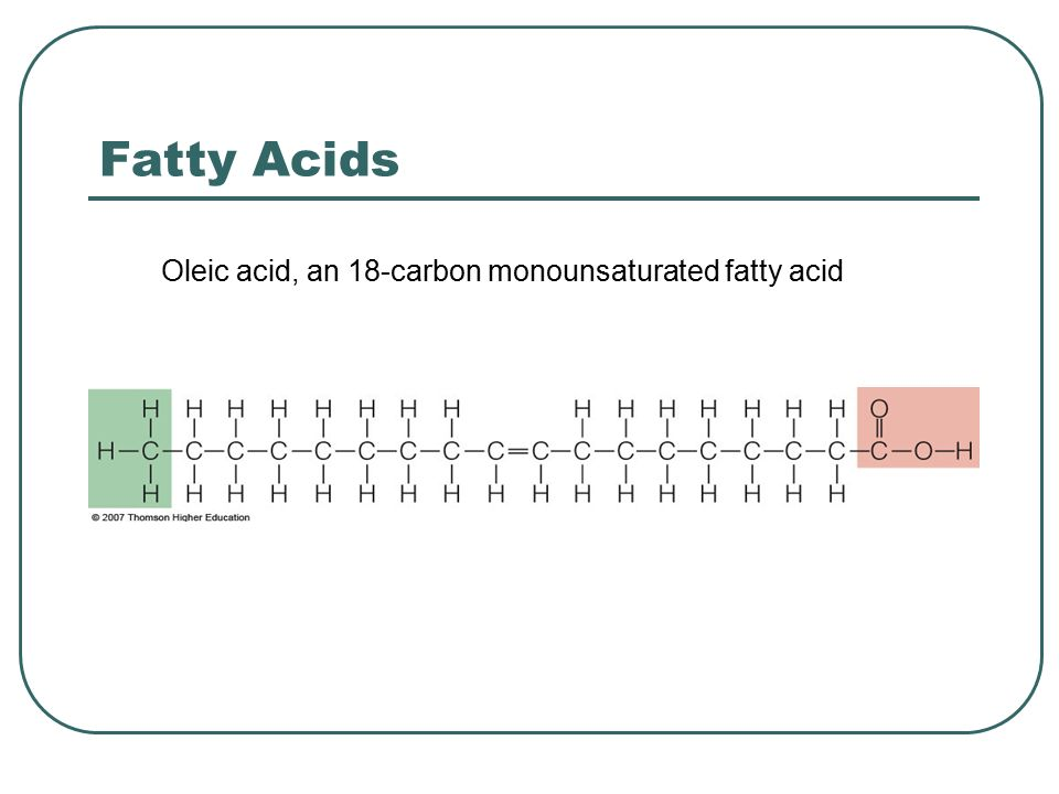Fatty Acids Oleic acid, an 18-carbon monounsaturated fatty acid