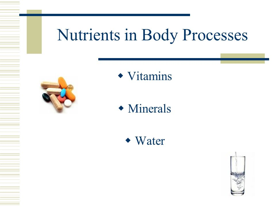 Nutrients in Body Processes  Vitamins  Minerals  Water