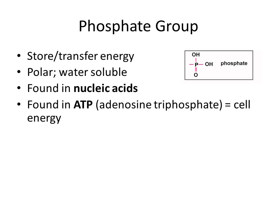 Phosphate Group Store/transfer energy Polar; water soluble Found in nucleic acids Found in ATP (adenosine triphosphate) = cell energy