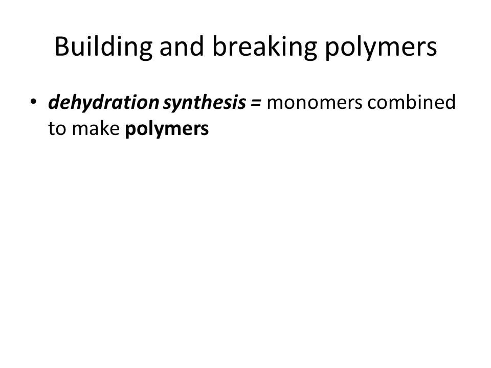 Building and breaking polymers dehydration synthesis = monomers combined to make polymers