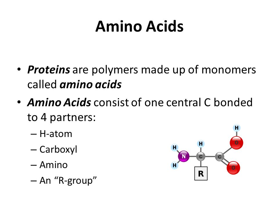 Amino Acids Proteins are polymers made up of monomers called amino acids Amino Acids consist of one central C bonded to 4 partners: – H-atom – Carboxyl – Amino – An R-group