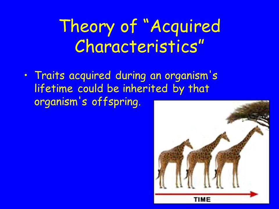 Theory of Use vs.