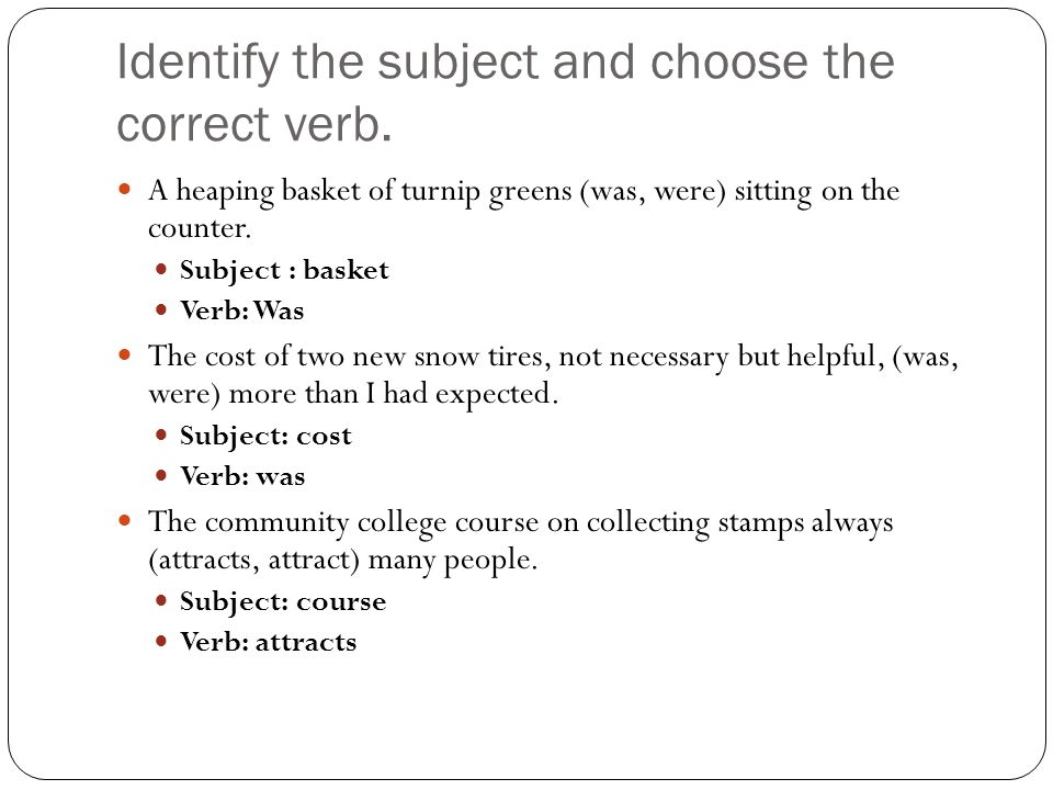 Identify the subject and choose the correct verb.
