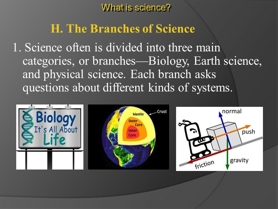 G. Parts of a Whole 2. Scientists often break down problems by studying just one part of a system.