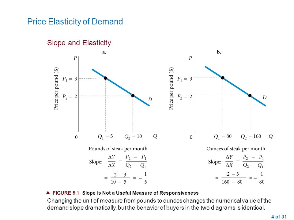 an introduction to the price elasticity of demand