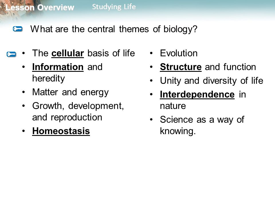 Lesson Overview Lesson Overview Studying Life What are the central themes of biology.