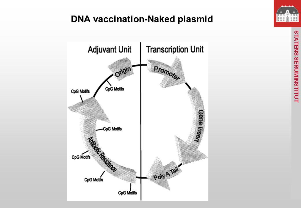 statens serum institut vacciner