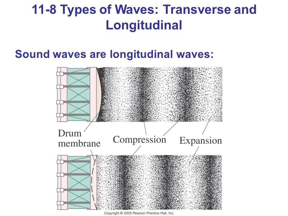 11-8 Types of Waves: Transverse and Longitudinal Sound waves are longitudinal waves: