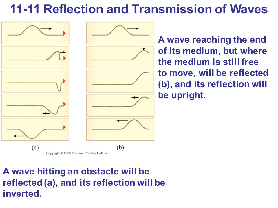11-11 Reflection and Transmission of Waves A wave reaching the end of its medium, but where the medium is still free to move, will be reflected (b), and its reflection will be upright.