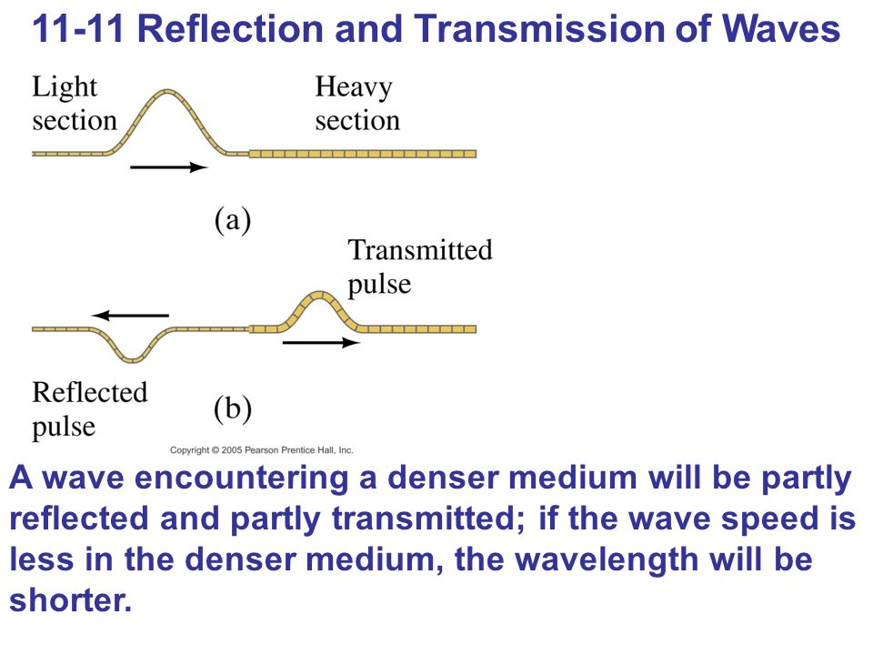 11-11 Reflection and Transmission of Waves A wave encountering a denser medium will be partly reflected and partly transmitted; if the wave speed is less in the denser medium, the wavelength will be shorter.